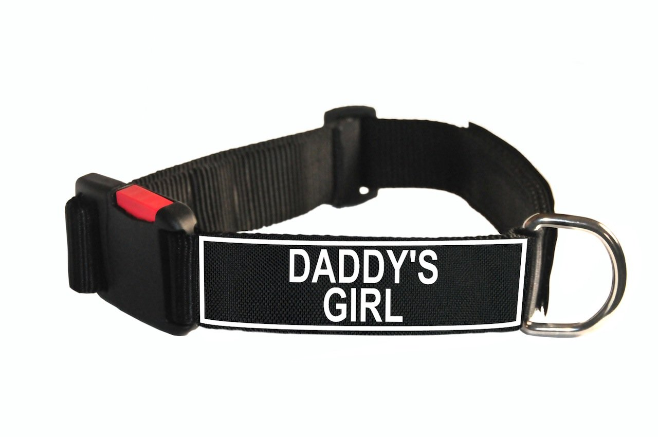 Dean & Tyler Nylon Patch Dog Collar with Daddy's Girl Patches, Medium, Fits Neck 21 to 26-Inch