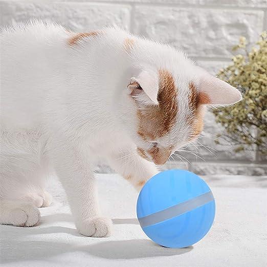 Wicked Ball Toy Activo Salto de pelota Fun Interactive Teaser Toy ...