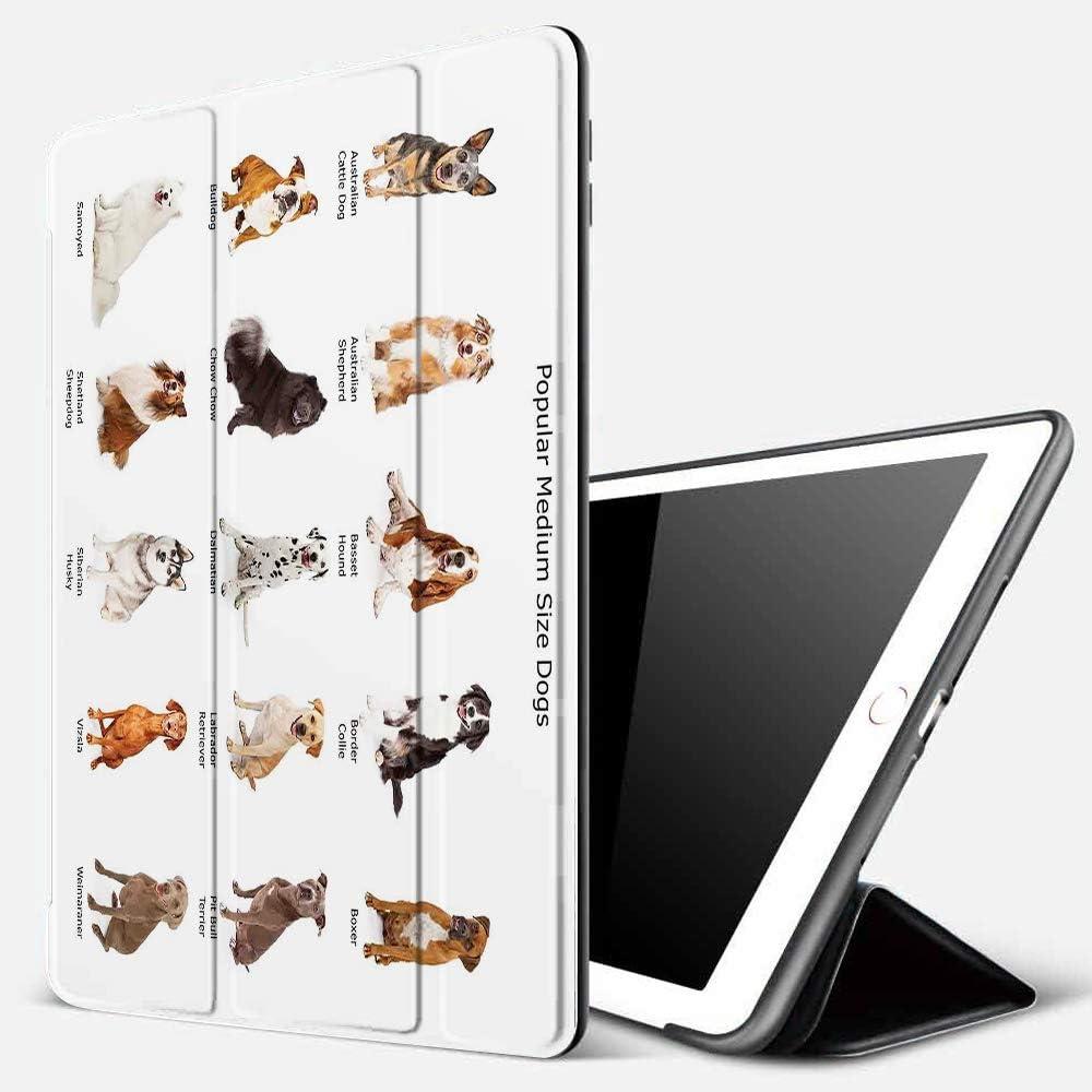 Funda iPad 10.2 Inch 2018/2019,Perro, un Grupo de Diferentes Razas de Cachorros Familia Tipo Especies Dálmata Husky Bulldog Image Print, Multi,Cubierta Trasera Delgada Smart Auto Wake/Sleep