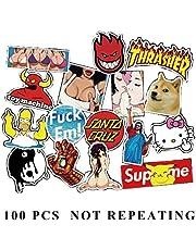 FineFun COOL 100 PCS pack of random vinyl waterproof and UV resistant stickers,100% Vinyl sticker