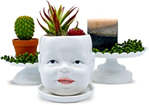 Ceramic Succulent Pot | Cute Indoor Outdoor Head Planter | Unique Novelty Face Décor for Cactus, Plants, and Flowers - White