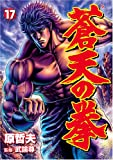 Fist of the Blue Sky 17 (BUNCH COMICS) (2007) ISBN: 4107713563 [Japanese Import]