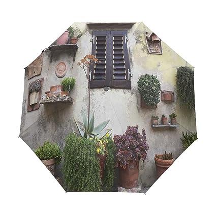 Amazon.com: Paraguas para ventana, planta de golf, viaje ...