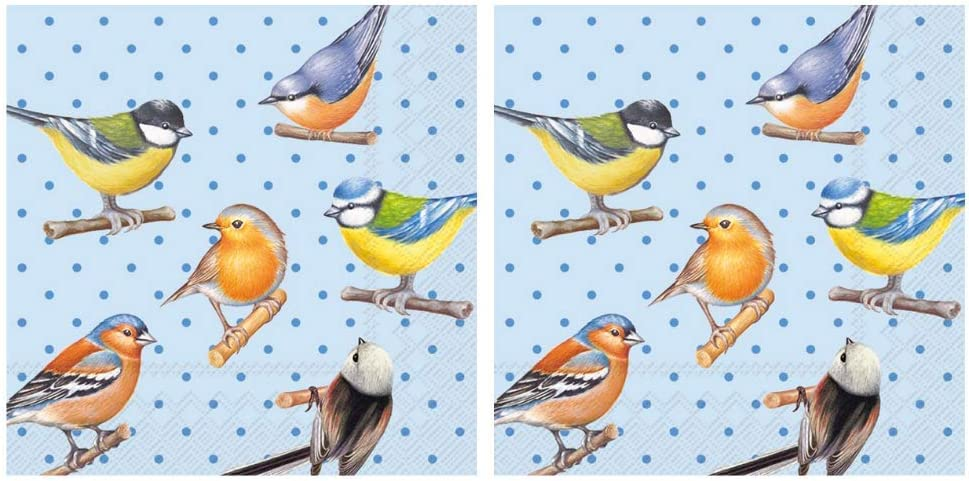 Scout and Company Colorful Song Birds and Dots Cocktail Napkins - Cute Designer Cocktail Napkins 3-ply, 40 count - For Barware, Beverage Serviettes and Cocktail Party