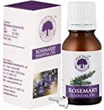 Old Tree Rosemary Essential Oil, 15ml