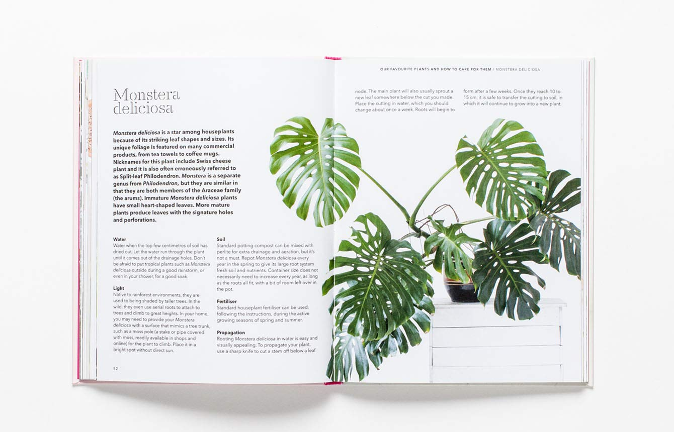 How to Raise a Plant: and Make it Love You Back: 1: Amazon