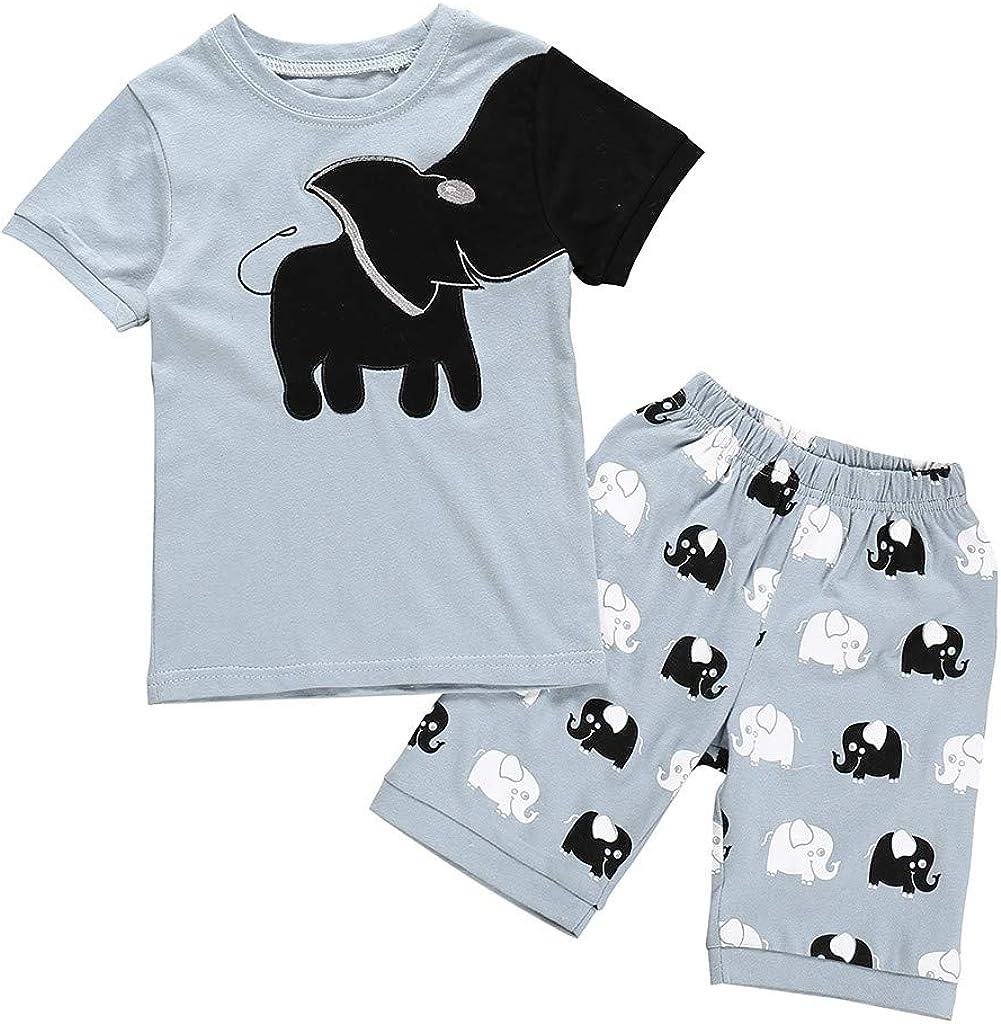 Little Boy Cartoon Dinosaur T-Shirt Tops Striped Shorts Pjamas Outfits Pjs Set WOCACHI Toddler Baby Boys Shorts Sets
