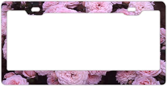 Car Tag Cover,License Plate Frame For Women Vintage Rose And Flowers License Plate Frame Vintage Flowers Stainless Steel License Plate Covers For Us Vehicles Standard