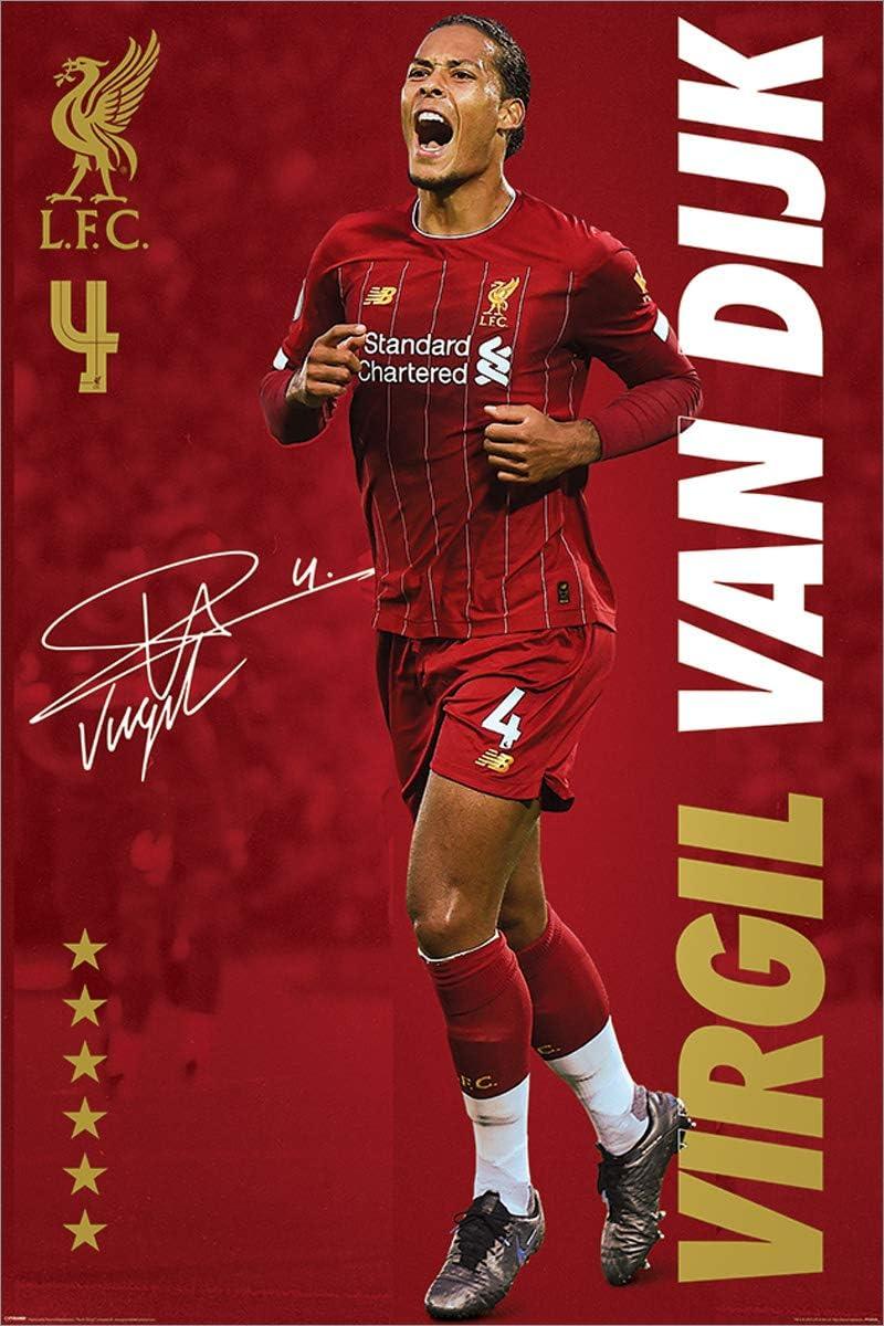 Liverpool FC Maxi Poster 61 x 91,5 cm Virgil Van Dijk