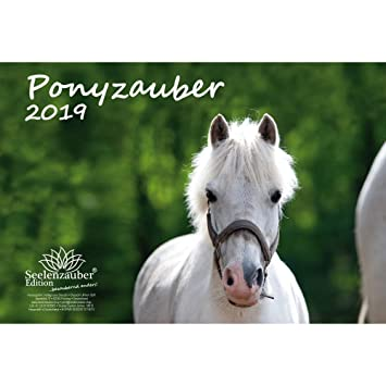Pony mágica · DIN A4 · Premium Calendario 2019 · Pony ...