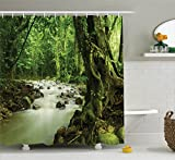 Rainforest Decorations Shower Curtain Set by Ambesonne, Tropical Rainforest And Rocky River In Selangor State Malaysia Asian Wildlife, Bathroom Accessories, 69W X 70L Inches, Green Brown