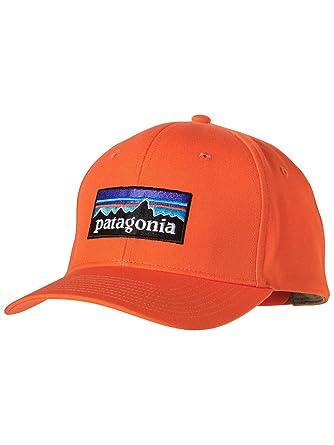 Cap Men Patagonia P-6 Logo Roger That Cap  Amazon.co.uk  Clothing 70dffe4e2643