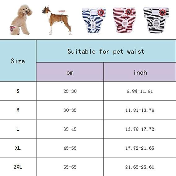 Yunt - Pañales para perro, cómodos, de algodón, a rayas, para perros y perros con solapas: Amazon.es: Productos para mascotas