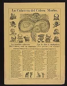 Foto: Calavera del cólera morbo, cólera, serpiente, clase social ...