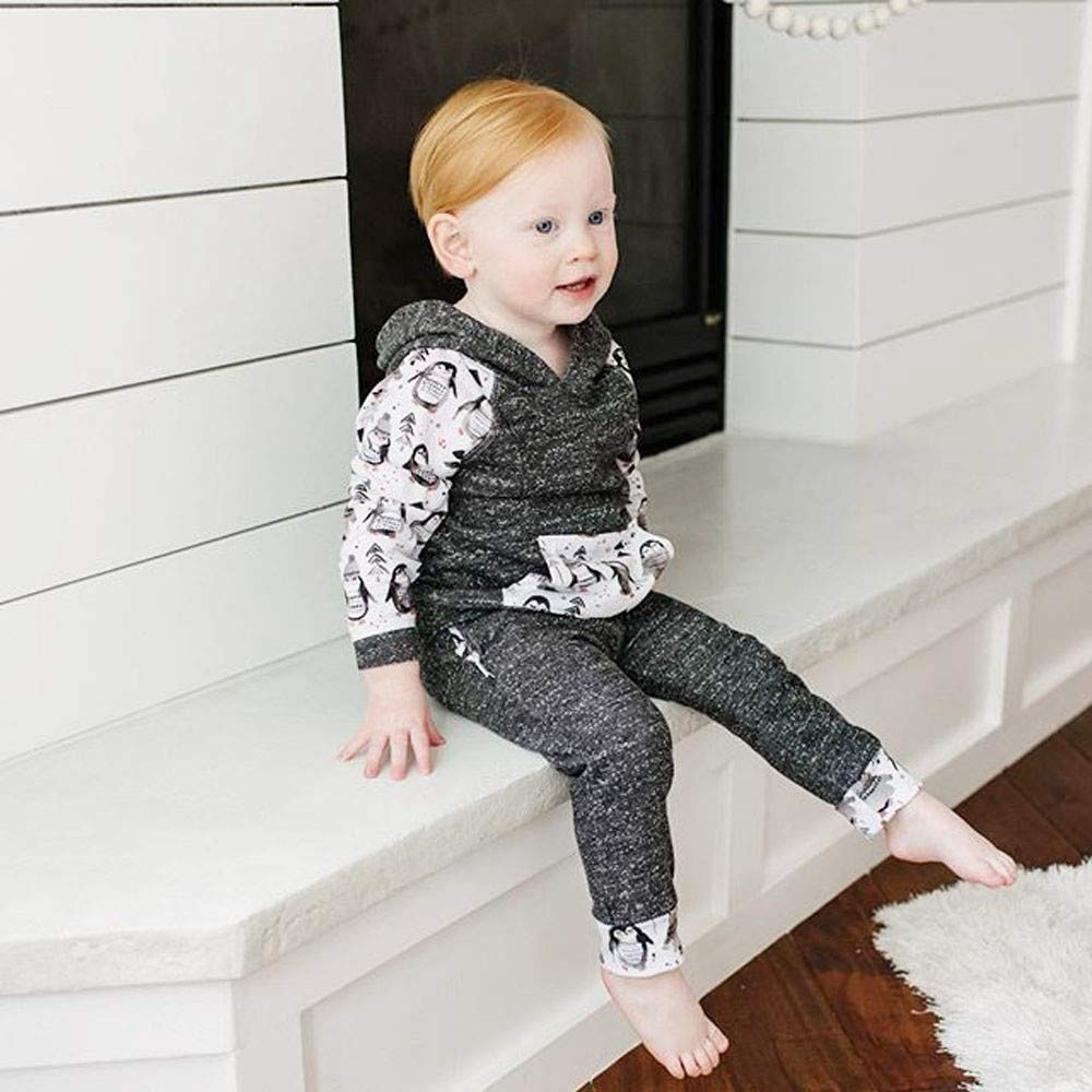 Baby Clothes Set Cartoon Penguin Long Sleeves Hooded Sweatshirt Tops Pants Set Outfit Clothing