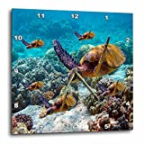 3dRose LLC Sea Turtles 10 by 10-Inch Wall Clock Review