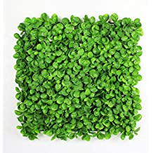 """Fireproof Lifelike artificial boxwood Panel 20""""x 20"""" 6 pack Water-free Durable Privacy Fence Screen Greenery Wall By ULAND, Suitable for Both Outdoor or Indoor, Garden, Backyard and Home Decor"""