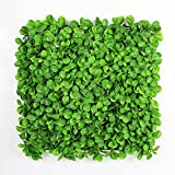 Artificial Boxwood Topiary Hedge Plant Sound Diffuser Privacy Fence Screen Greenery Wall Covers 33 SQ feet 12 Panels 20''x 20'' Suitable for Both Outdoor or Indoor, Garden, Backyard and Home Décor