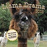 Llama Drama 2018: 16 Month Calendar Includes September 2017 Through December 2018