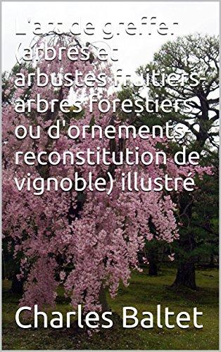 lart-de-greffer-arbres-et-arbustes-fruitiers-arbres-forestiers-ou-dornements-reconstitution-de-vigno