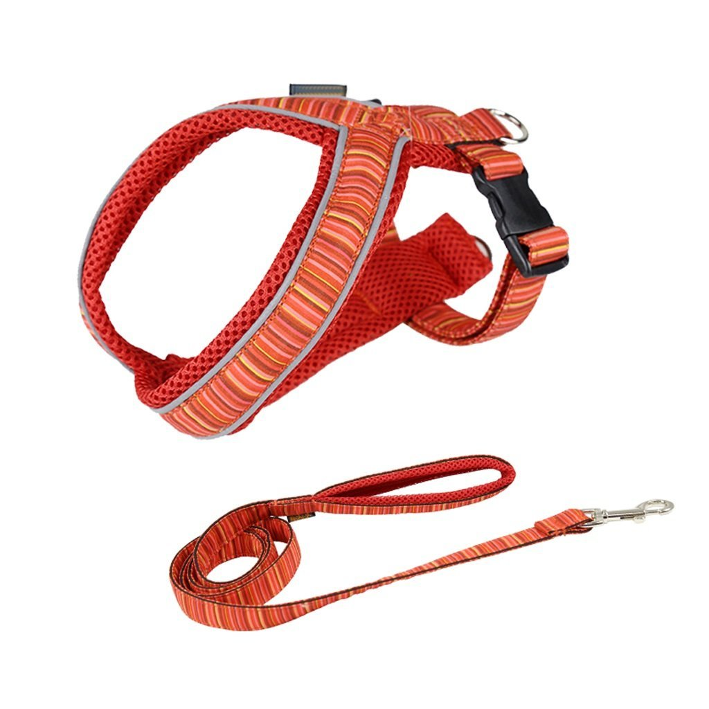 TLMY Dog Leash Small Dog Medium Dog Chain Dog Teddy Hyena Rope Strap Dog Collar Dog Pet Supplies Pet Chain (color   orange, Size   25)