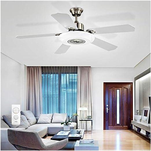 NIUZIMU Luz de ventilador de techo con control remoto Luz de ...