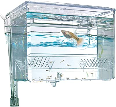 breeding-box-for-fish-tank