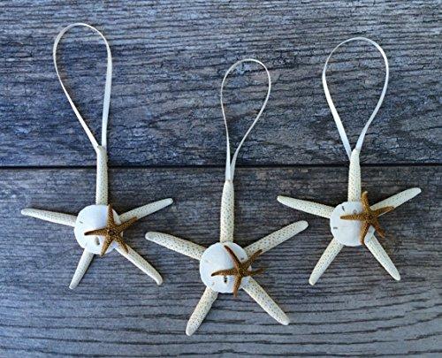 Starfish Ornament with Sanddollar and Mini Starfish - Natural 3-4