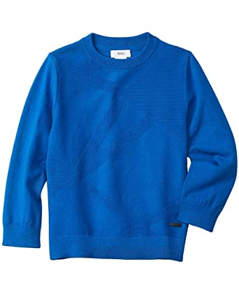 87b969e0363 Image Unavailable. Image not available for. Color: Hugo Boss Boys Sweater  ...