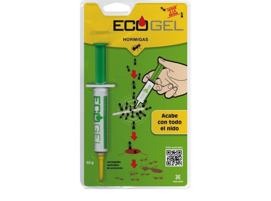 Ecogel 4035 - Gel en Jeringuilla contra hormigas, 10 gr: Amazon.es ...