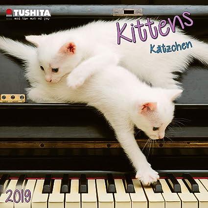 Calendario 2019 Mini calendario gato y gatito 2019 (formato mini ...