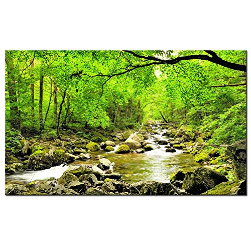 rning Sun Forest Picture Print on Canvas - Forest Stream Lake Wall Art - Framed and Ready to Hang - Modern Home Decor- 24