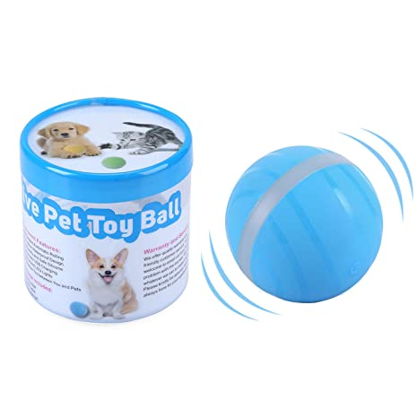 Amazon.com: ritastar Wicked pelota de juguete para gatos y ...