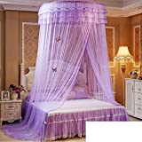 Are There Beds Bigger Than King Size WENZHANG Dome net mosquito net,Home european ceiling hanging round palace princess bed double anti mosquito bites keeps away insects & flies-F Twinch1