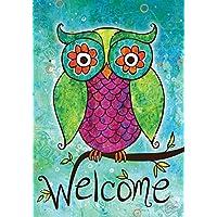 Toland Home Garden Rainbow Owl 12.5 x 18 Inch Decorative Colorful Welcome Bird Branch Garden Flag