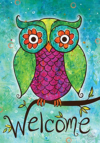 Toland - Rainbow Owl - Decorative Welcome Colorful Mulitcolor Bright Cute USA-Produced (Outdoor Flag)