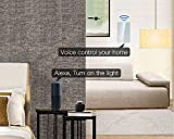 Smart Wifi Light Switches, Touch Wall Switch Panel, Replace 2 Switches in 1 Gang Wall Box, Combination Switch Compatible with Alexa, Smartphone App Control
