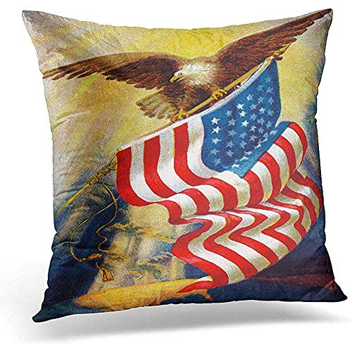 Johnnie Decorative Pillow Cover Patriot Celebrating ''Old Glory'' Our American Flag Circa 1912 Vintage of Bald Eagle and Americana Throw Pillow Case Square Home Decor Pillowcase 18x18 Inches