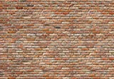 Komar 8-741 8-Panels 12-Foot 1-Inch by 8-Foot 4-Inch Bricks Wall Mural