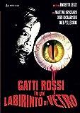 Gatti Rossi in Un Labirinto di Vetro (DVD)