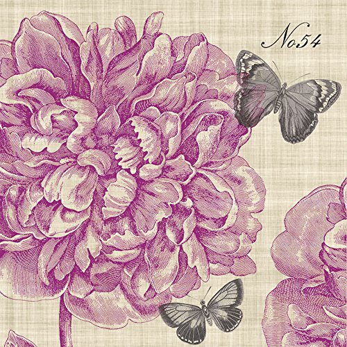Paperproducts Design Linen Pink Piedmont Peony Paper Luncheon Napkin, 6.5 by 6.5-Inch, Multicolored