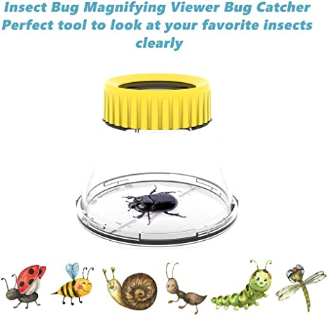 4Pack, Yellow Bug Magnifying Viewer 3X Magnifying Insect Observation Kit Built-in 7cm Ruler with 2 Slant Tweezers Blue /& Red Color Bug Viewer Catcher Cage for Kids Science Nature Exploration