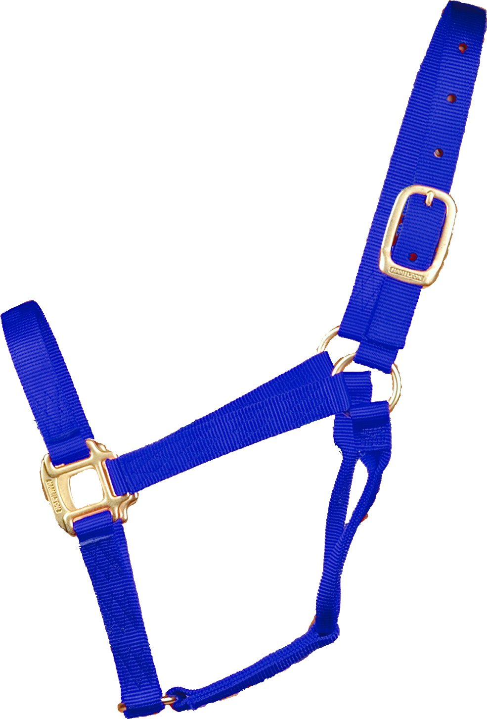 Hamilton 1-Inch Nylon Quality Halter for 500 to 800-Pound Horse, Small, bluee