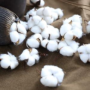 FLOCHESS Cotton Decorative Balls 20 Pieces Natural Cotton Bolls Decor for Wreath Home Farmhouse Style Wedding Decorationn