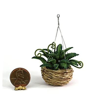 Bright Delights Dollhouse Miniature Fern in Hanging Basket Planter: Toys & Games