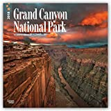 Grand Canyon National Park 2018 12 x 12 Inch Monthly Square Wall Calendar, USA United States of America Scenic Nature