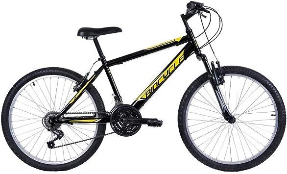 Biocycle Anexo susp 26