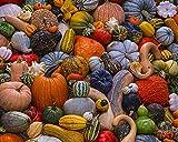 Vermont Christmas Company Autumn Harvest Jigsaw Puzzle 1000 Piece