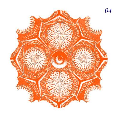 Nova haute musique vol 4 by various artists on amazon for Haute musique