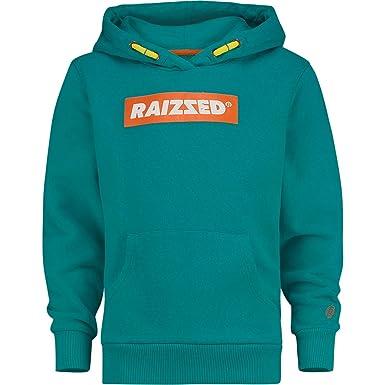 stylistisches Aussehen neue Fotos unschlagbarer Preis Raizzed Jungen Sweatshirt New York Green Blue (16-176 ...